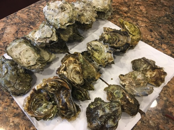 Blue Point, Netarts Bay, & Willapa Bay Oysters